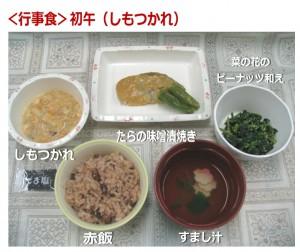 H280206_hatuuma_ image